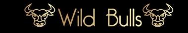 Wild Bulls Coverband